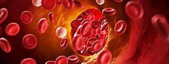 wat-doet-infrarood-warmte-voor-uw-gezondheid